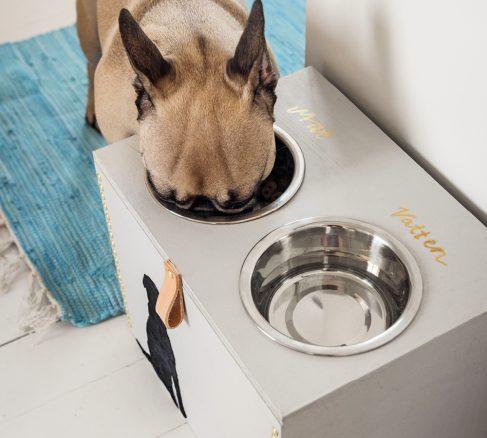 Gör en smart matstation till din hund