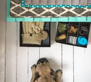 Lådor, Tjena 29 kr/st från Ikea, mått 27x35x10 cm. Hundkex i form av ben köps i lösvikt på Granngården. Skurborstar och allrengörningssvamp från Iris Hantverk. Stickad hundtröja, 189 kr från Hööks.