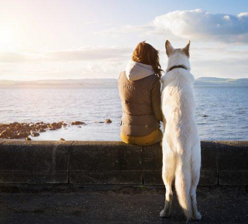 flicka och hund tittar på solnedgång