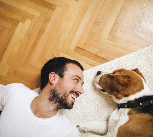 Så får du din hund att må bra