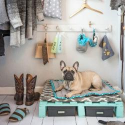 Perfekt förvaring för hundens kläder, extra påsar och annat som kan vara bra att ha nära till hands.