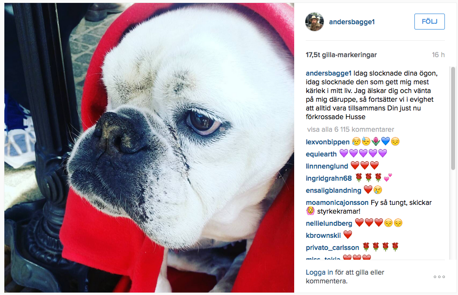 Anders Bagges instagram med ett foto av Esther