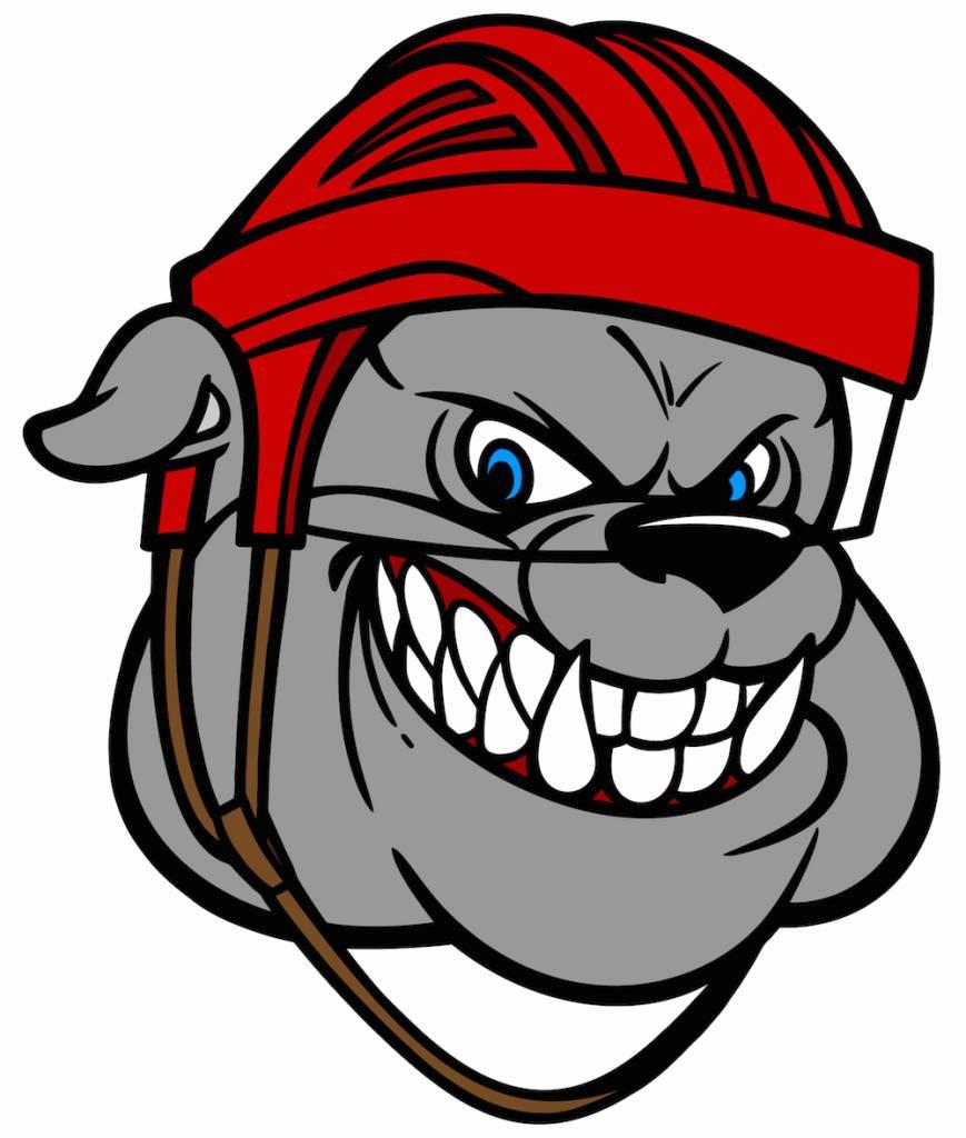 tecknad hund med hockeyhjälm