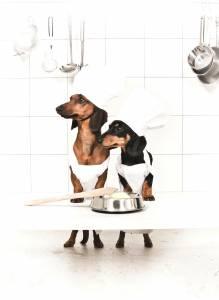 Två hundar i köket, som har gjort hundglass kanske?