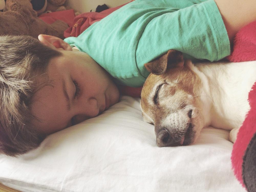 Pojke och hund ligger sked