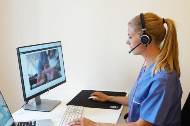 Veterinär sitter vid datorskärm och talar i telefon via headset