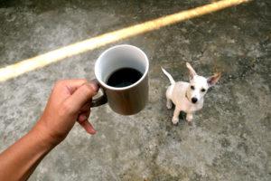 Varning för kaffe!