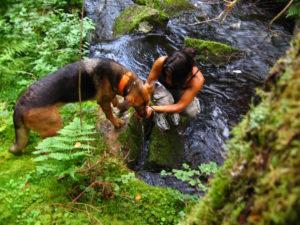 Carro ger Boss en slurk vatten i skogen