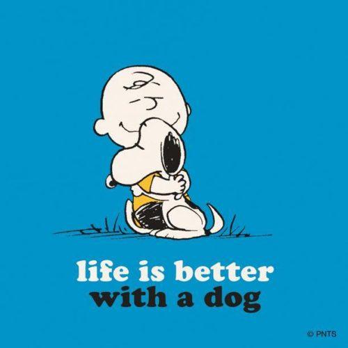 Snobben & Charlie Brown kramas , text: Livet är bättre med en hund