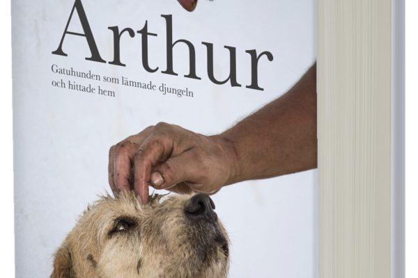 Vinnarna av boken om Arthur