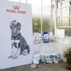 Royal Canins olika hundmatspåsar