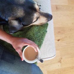 """Livets goda enligt Carro = Koi vid sin sida och en kaffekopp i handen. Och så frågan: """"Ska vi ta en sväng?"""""""