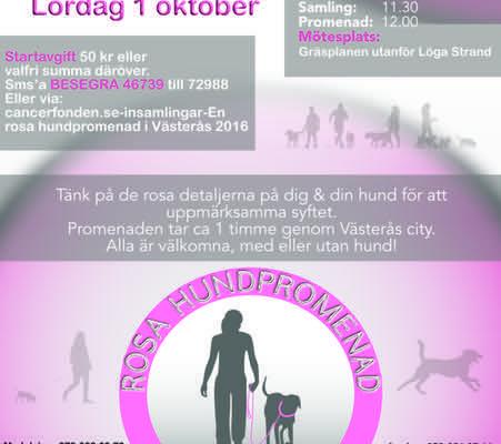 Rosa hundpromenad i Västerås!