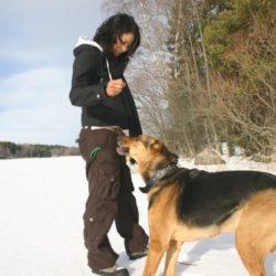 Carro och hunden Boss