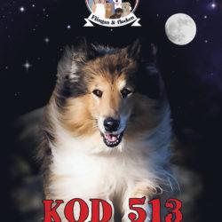 Omslaget till barn- och ungdomsboken Kod 513 av Jeanette Bergenstav