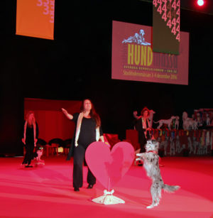Avslutningsnumret hade kärleken i hunden i centrum, fint gestaltat av svenska freestylelandslaget. På bilden Frida Binette och Coup De Vent Juliette, en berger des Pyrénées á face rase som även kom tvåa individuellt.