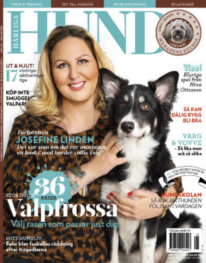 Omslaget till Härliga Hund nr 1 2017 med författaren Josefine Lindén och söta blandisen Maja.