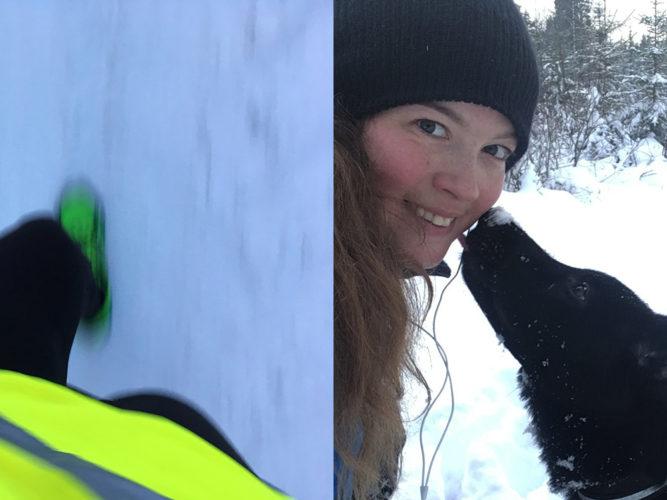 Så undviker du att hunden skadas vid vinterträning
