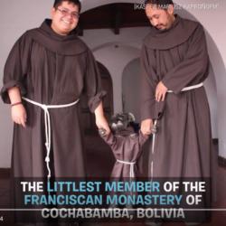 Friar Bigotón, klosterhunden