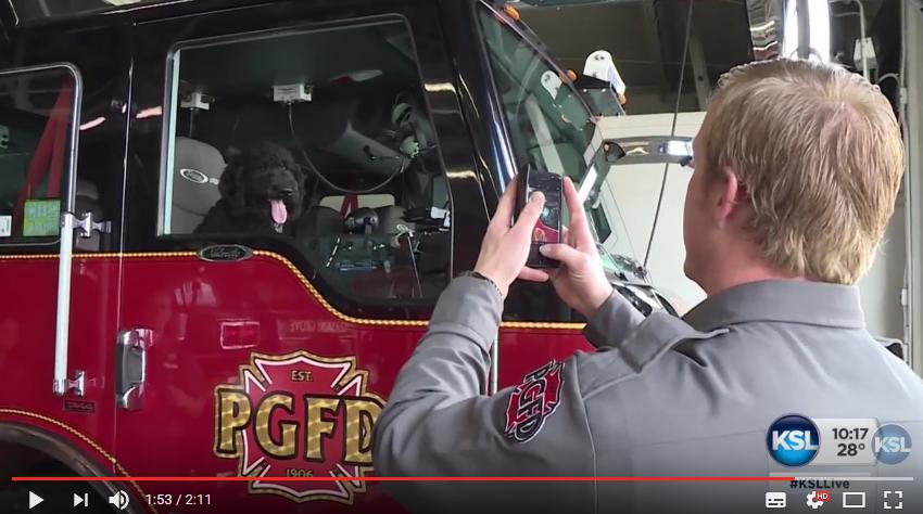 Hunden som hjälper brandmän