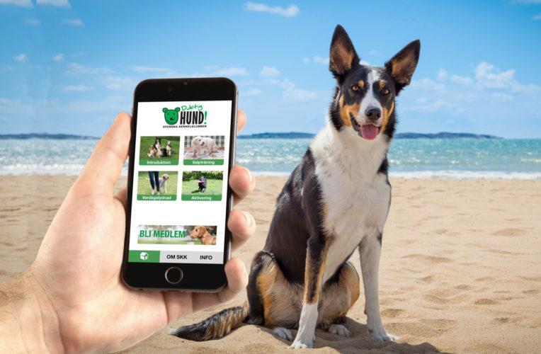 Träna enklare med smart app