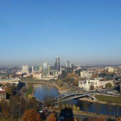 Många platser i Baltikum är hundvänliga. I topp ligger Litauens huvudstad Vilnius.