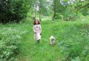 Hundar och barn