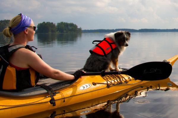 Sugen på Sverigeäventyr i sommar?
