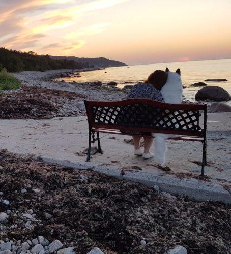 """Fler fina bilder """"Din hunds bästa sommar"""""""