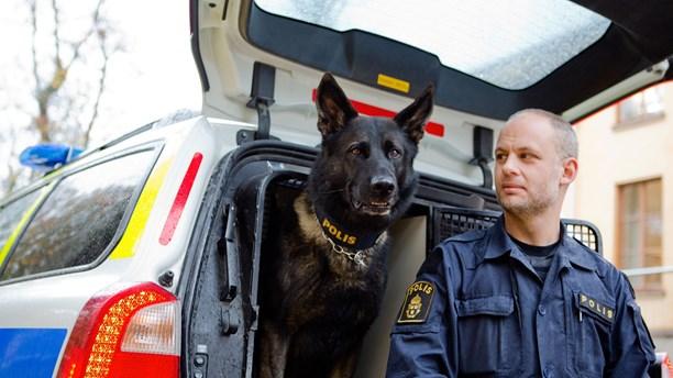 Attack blev årets polishund