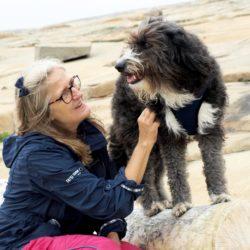 Så kan du stimulera hundens vilja och gemenskap