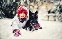 Husdjursdrömmar? Hälften av alla drömmer om en hund