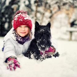 Hälften av de som drömmer om att skaffa ett husdjur drömmer om en hund. Foto Getty Images.