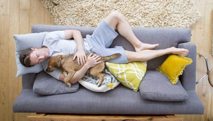 Drömmer du om din hund?