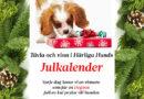 Vinnare julkalendern 1-8 december