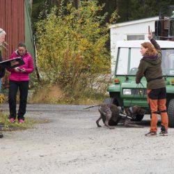 Nose work i Skellefteå