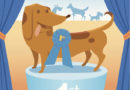 Vad betyder rosetten på hundutställningen?
