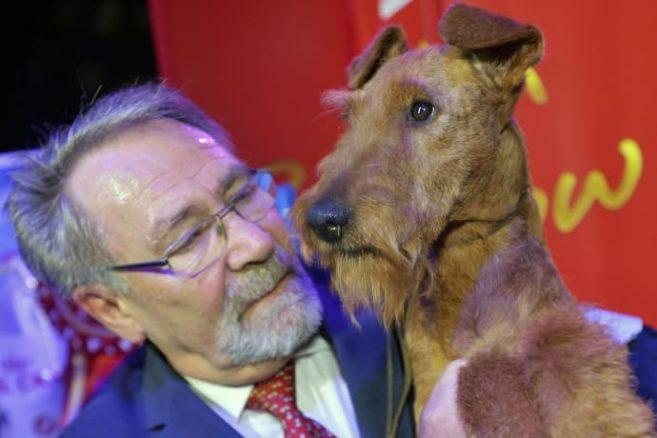 Best in Show på Stockholms Hundmässa