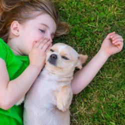 Kan vi prata med våra hundar?
