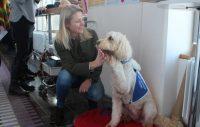 Livia – terapihunden