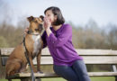 Samtalar du med din hund?