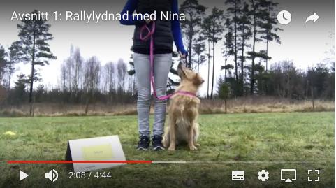 Avsnitt 1: Rallylydnad med Nina
