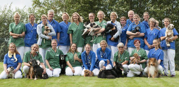 Var med och rösta om Årets Djurklinik