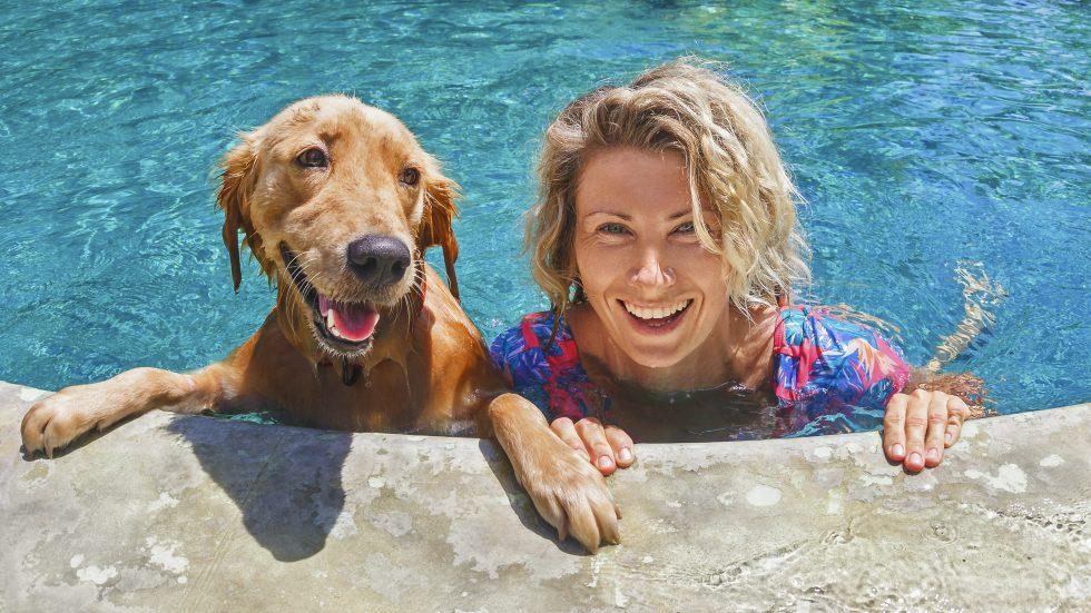 Ta med hunden på resan i sommar