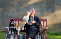 Vad betyder ansvarigt hundägande?