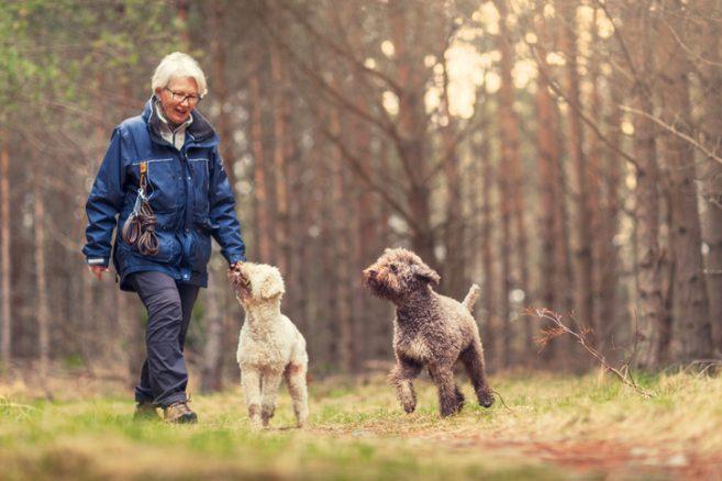 Kan en kort promenad minska risken för stroke?