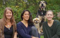 Stress, trauma och PTSD hos hund