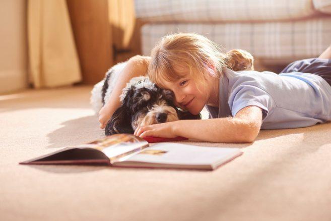 Skolhundar bör prövas som pedagogiska hjälpmedel