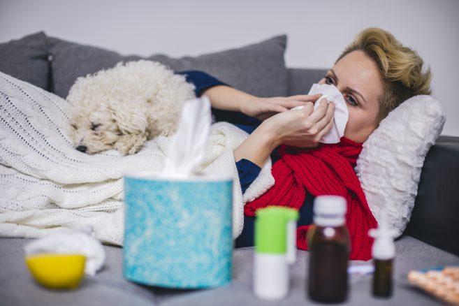 Kan jag smitta hunden med min förkylning?