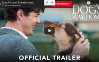 Ny film: A Dog's way home